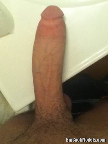 Nice and fat cut cock